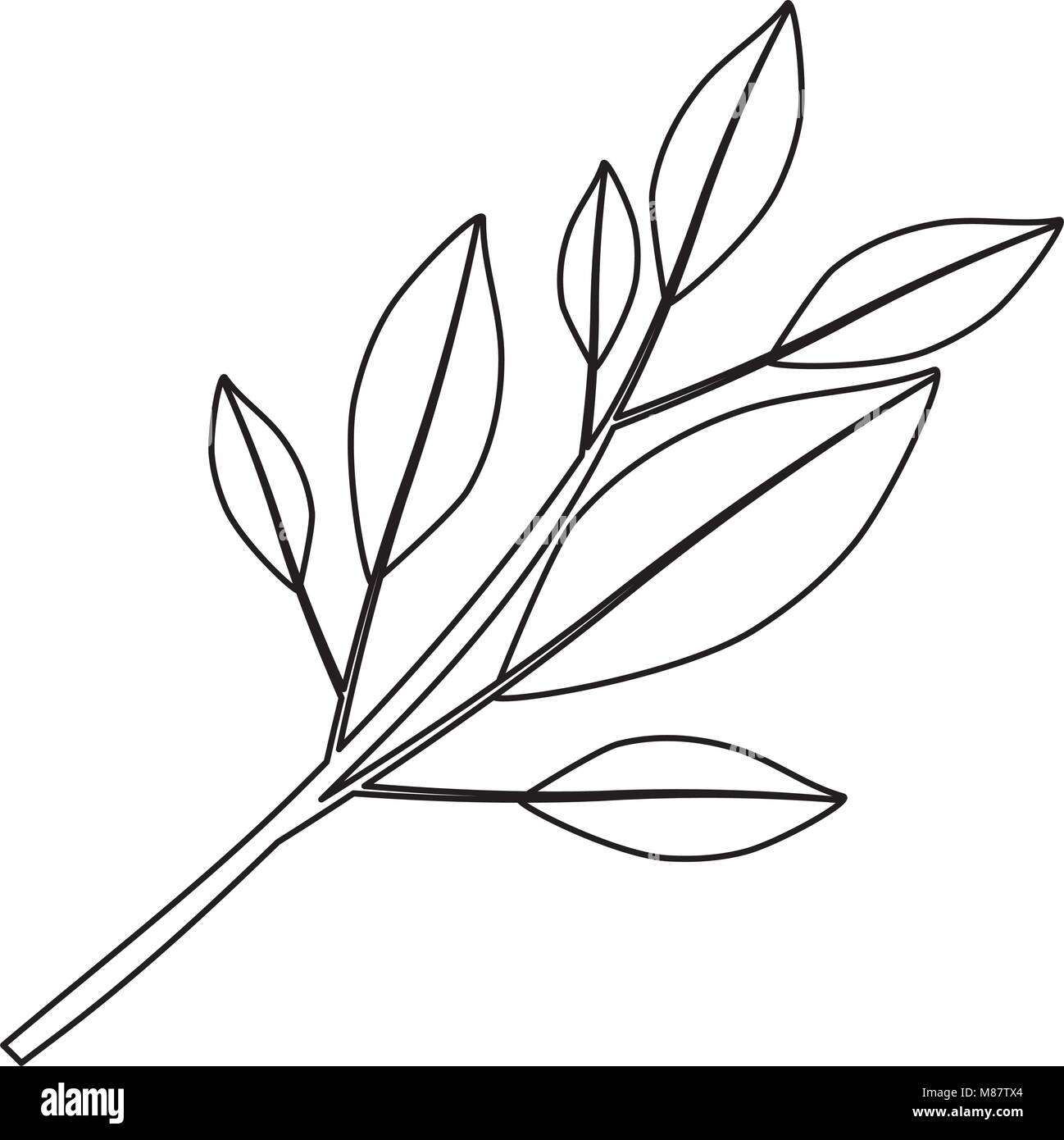 monochrome kontur der ast mit bl ttern vektor abbildung bild 177194140 alamy. Black Bedroom Furniture Sets. Home Design Ideas