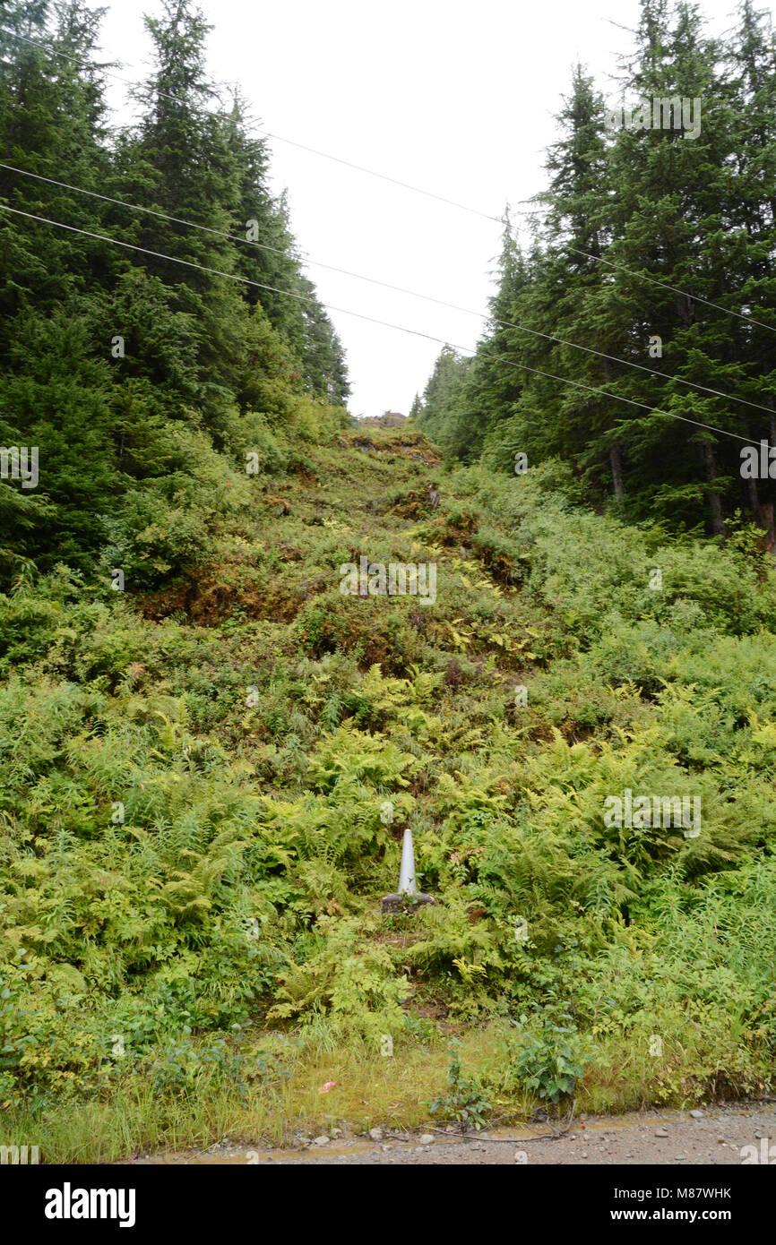 Der Kanada-USA-Grenze auf einem bewaldeten Hügel zwischen den Städten von Hyder, Alaska (unten) und Stewart, Stockbild
