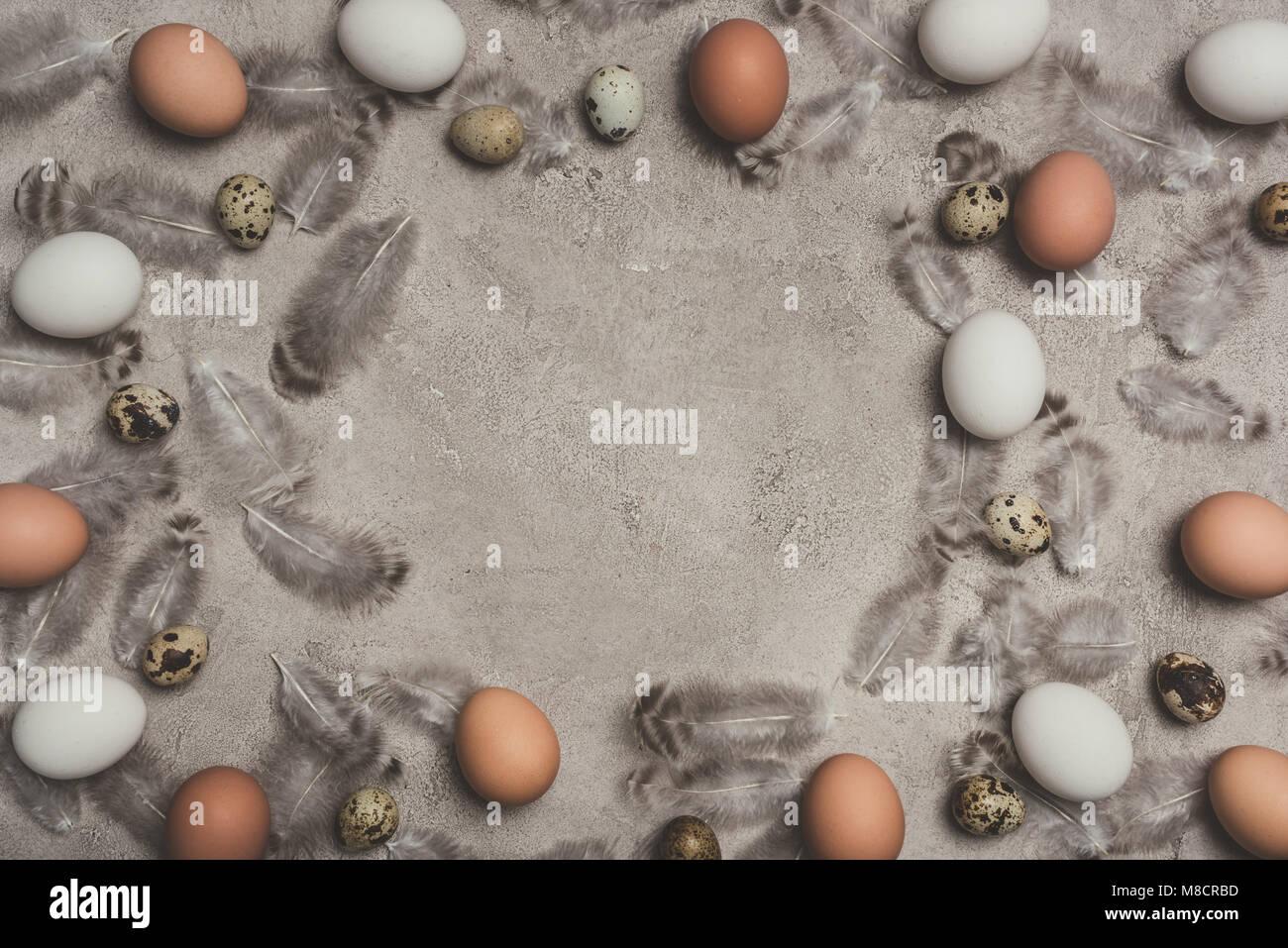 Rahmen der Hühner und Wachteln Eier auf die Betonoberfläche mit ...