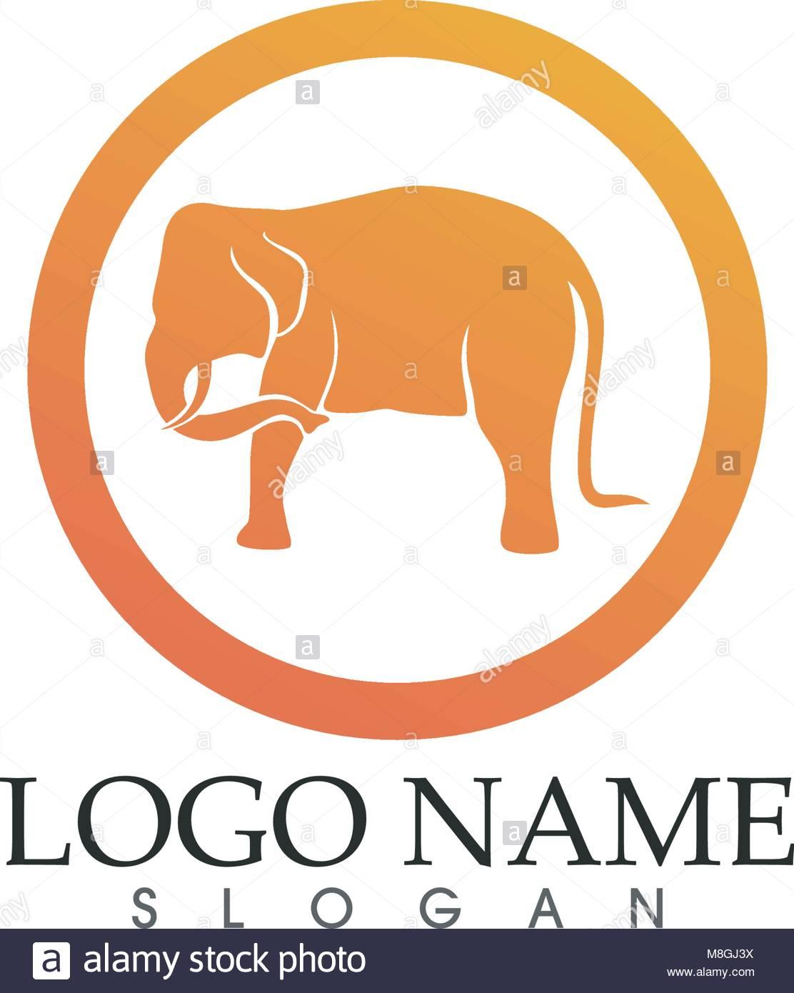 Elefant Vektor Logos Und Symbole Vorlage App Vektor Abbildung Bild