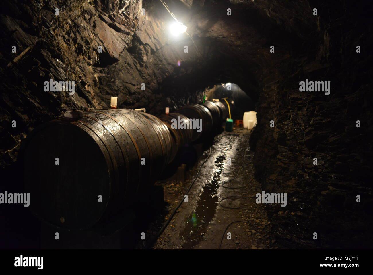 Alterung von Wein in Fässer im Keller, in den Fels gegraben, Weingut, Mosel, Cochem, Deutschland Stockbild