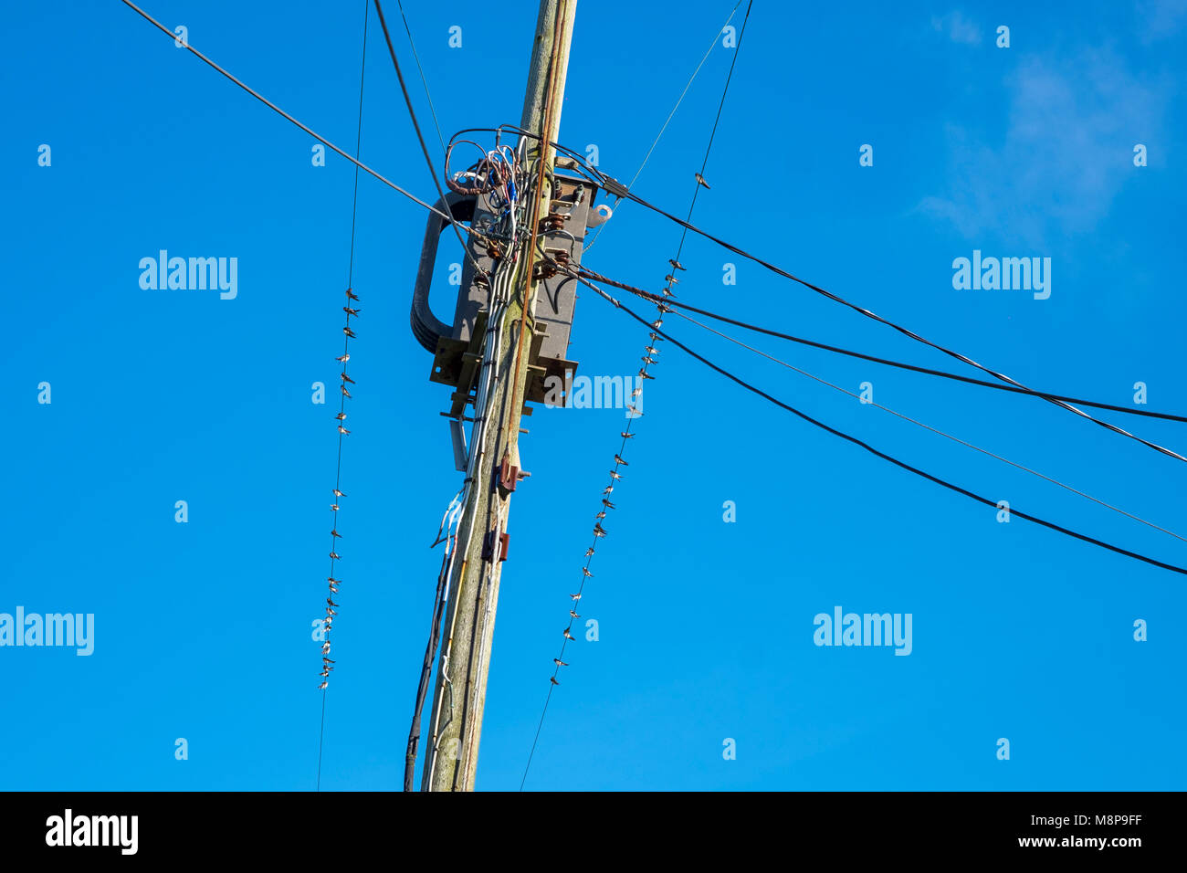 Fein Stromsteuerschaltung Bilder - Schaltplan Serie Circuit ...