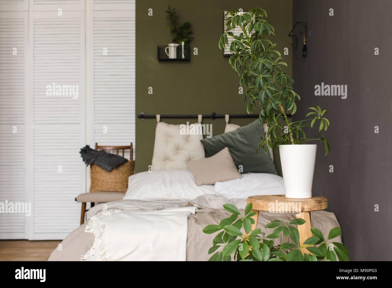 Pflanzen in Töpfen auf einem hölzernen Hocker Schlafzimmer Stockfoto ...