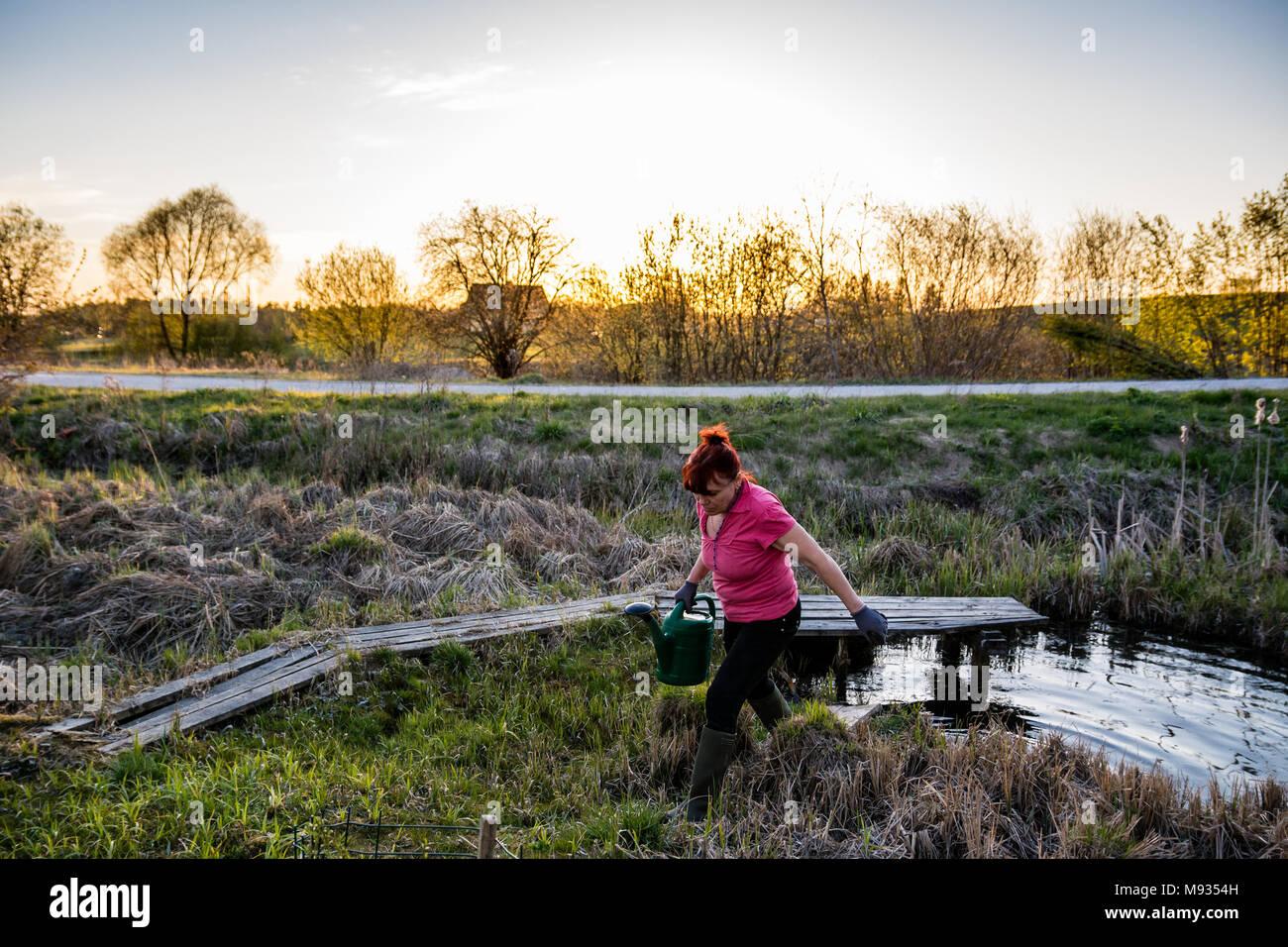 Kaukasische Frau Mit Grünen Gießkanne Gehen Auf Holz  Weg über Kleine Teich  Im Garten Im Frühjahr In Den Sonnenuntergang. Teich Für Die Bewässerung Des  ...