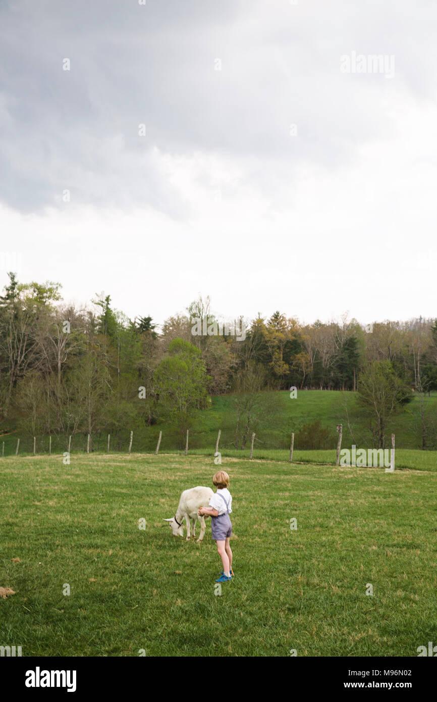 Junge und Ziege in Feld Stockbild