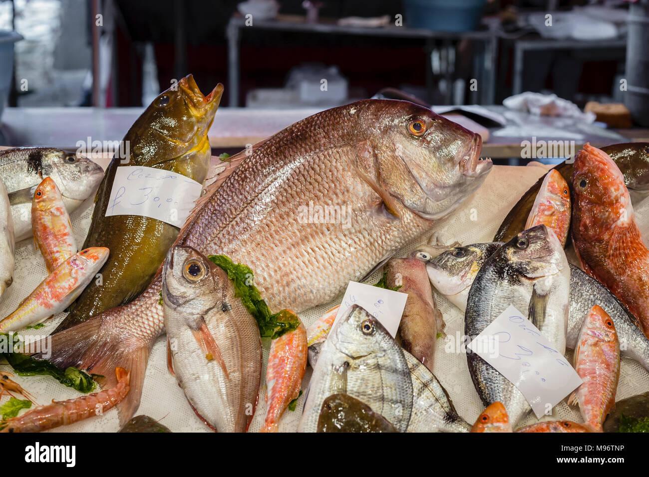 Fischmarkt La Pescheria, Catania, Sizilien, Italien. Stockbild