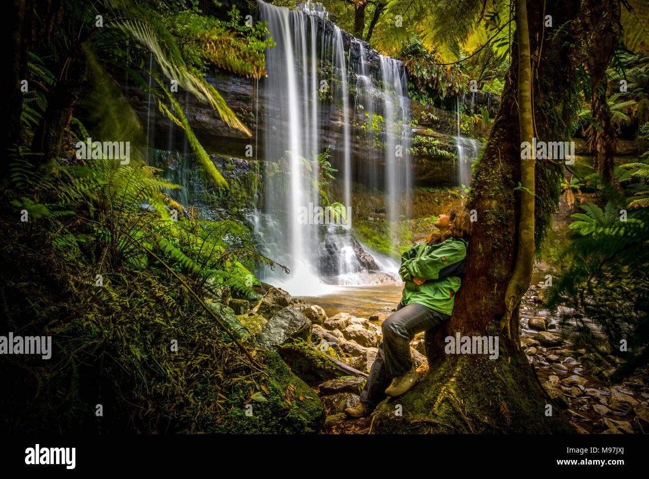 Australien, Tasmanien, Urwald, Wasserfall, Wasser, Russell Falls, Mount Field National Park Stockbild