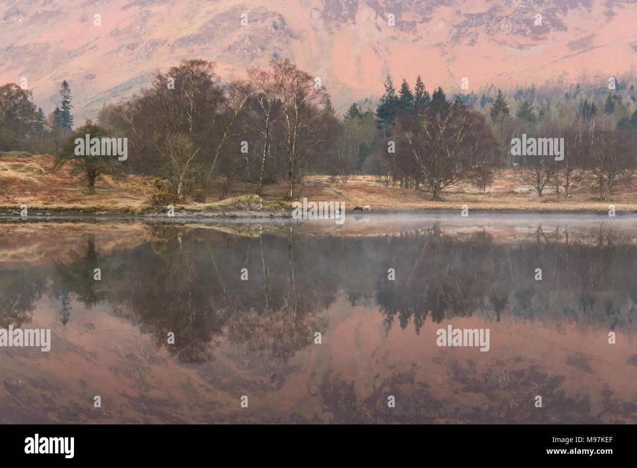 Derwentwater morgen Reflexionen - Lake District, Cumbria, England, Großbritannien Stockbild