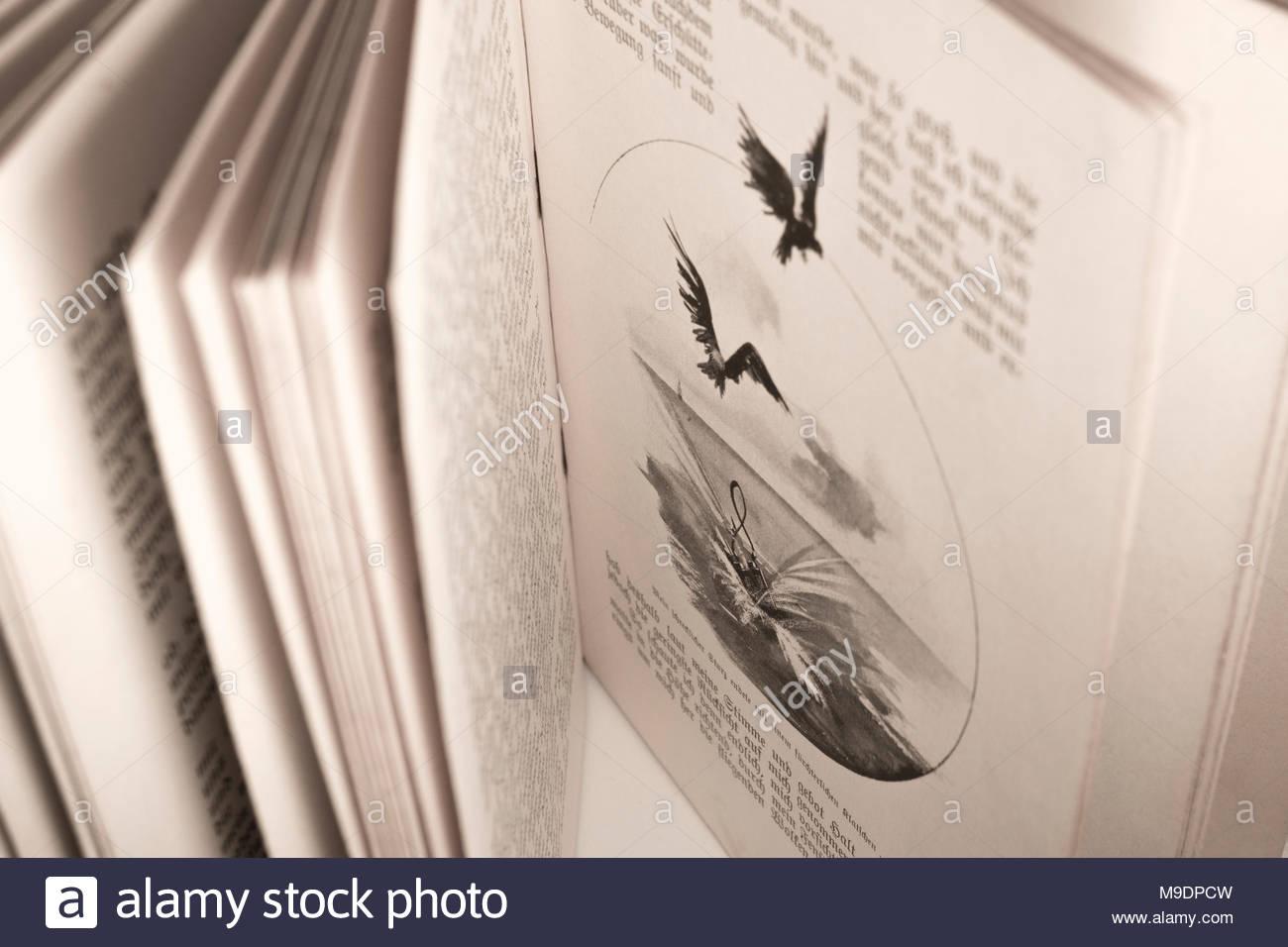 Details des Buches Gulliver's Travels, die Ende 1800 veröffentlichte s wie Gullivers Reisen, von Franz Hoffman. Enthält Abbildungen. Stockbild