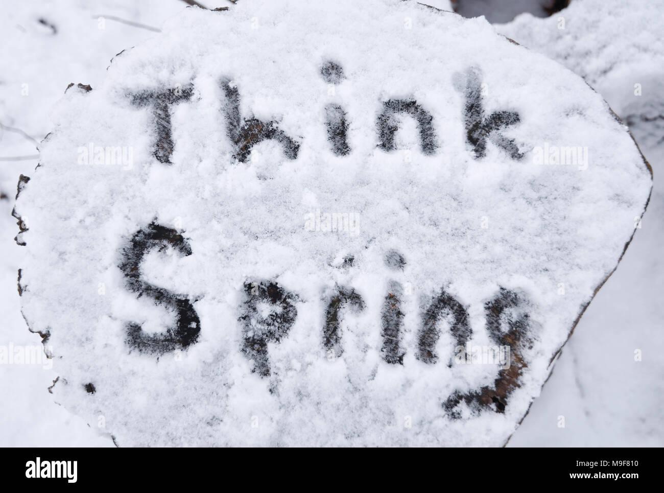"""Die Meldung """"think Spring"""" im Schnee geschrieben auf einen Schnitt nach einem frühen Jahreszeit Schneefall anmelden. Stockbild"""