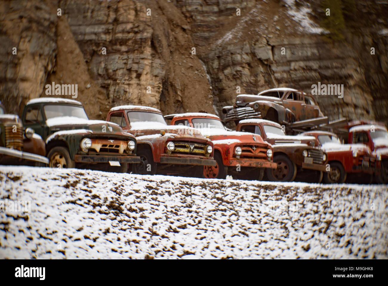 Eine Reihe von alten Ford Pickup Trucks aus den 1940er und 1950er Jahren, in einem alten Steinbruch, östlich von Clark Gabel Idaho. Stockbild