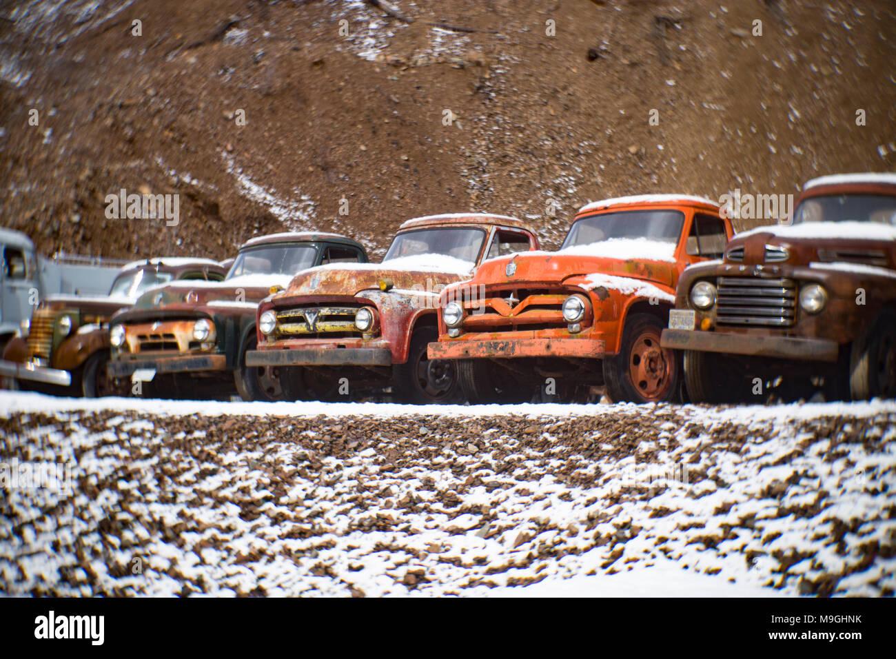 Eine Reihe von alten Ford farm Lkw aus den 1940er und 1950er Jahren, in einem alten Steinbruch, östlich von Clark Gabel Idaho. Stockbild