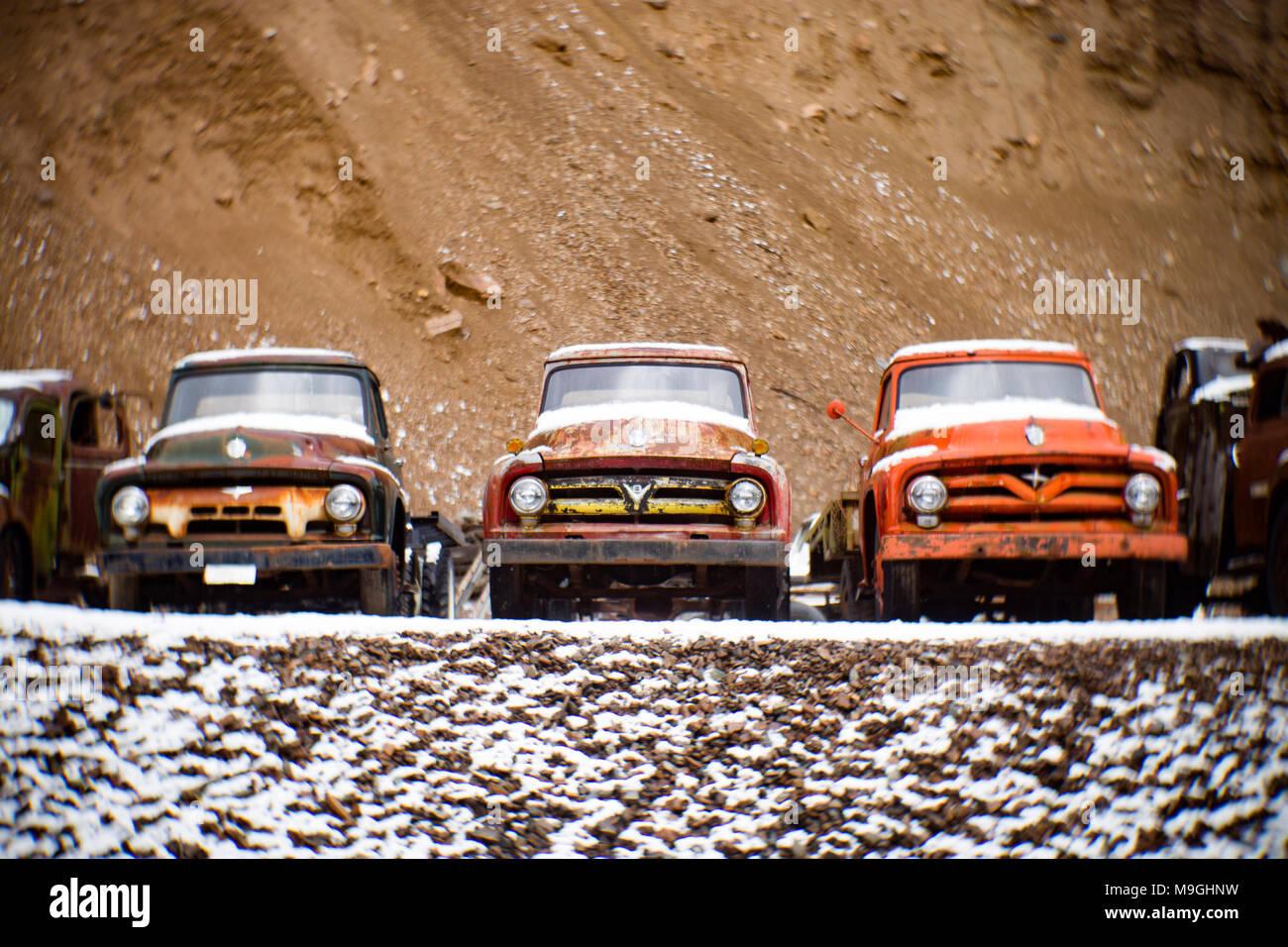 Eine Reihe von alten Ford 1953, 1954 und 1955 Pickup Trucks, in einem alten Steinbruch, östlich von Clark Gabel Idaho. Stockbild