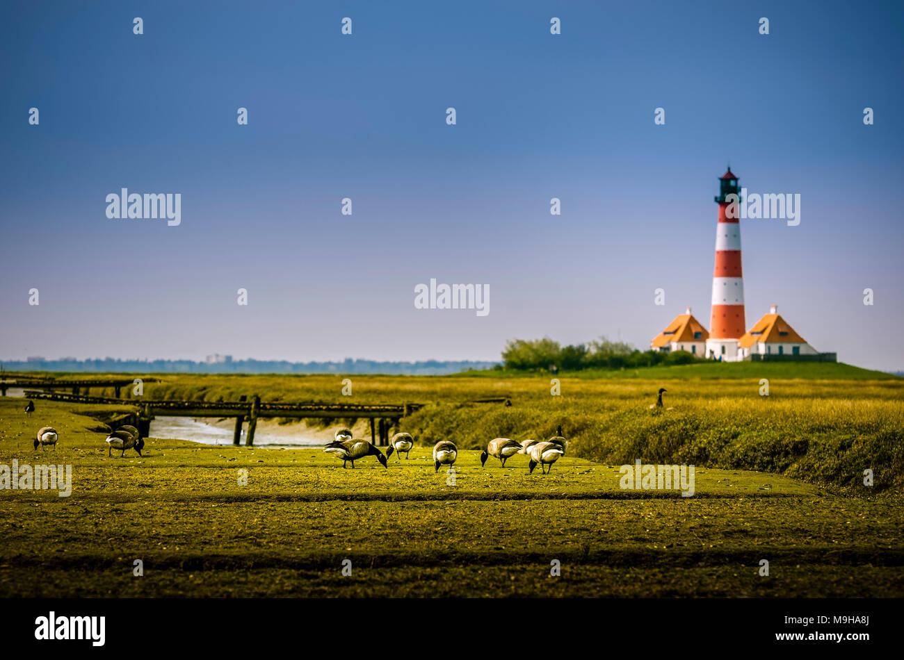 Deutschland, Schleswig-Holstein, Nordfriesland, Eiderstedt, St. Peter-Ording, Strand Stockbild