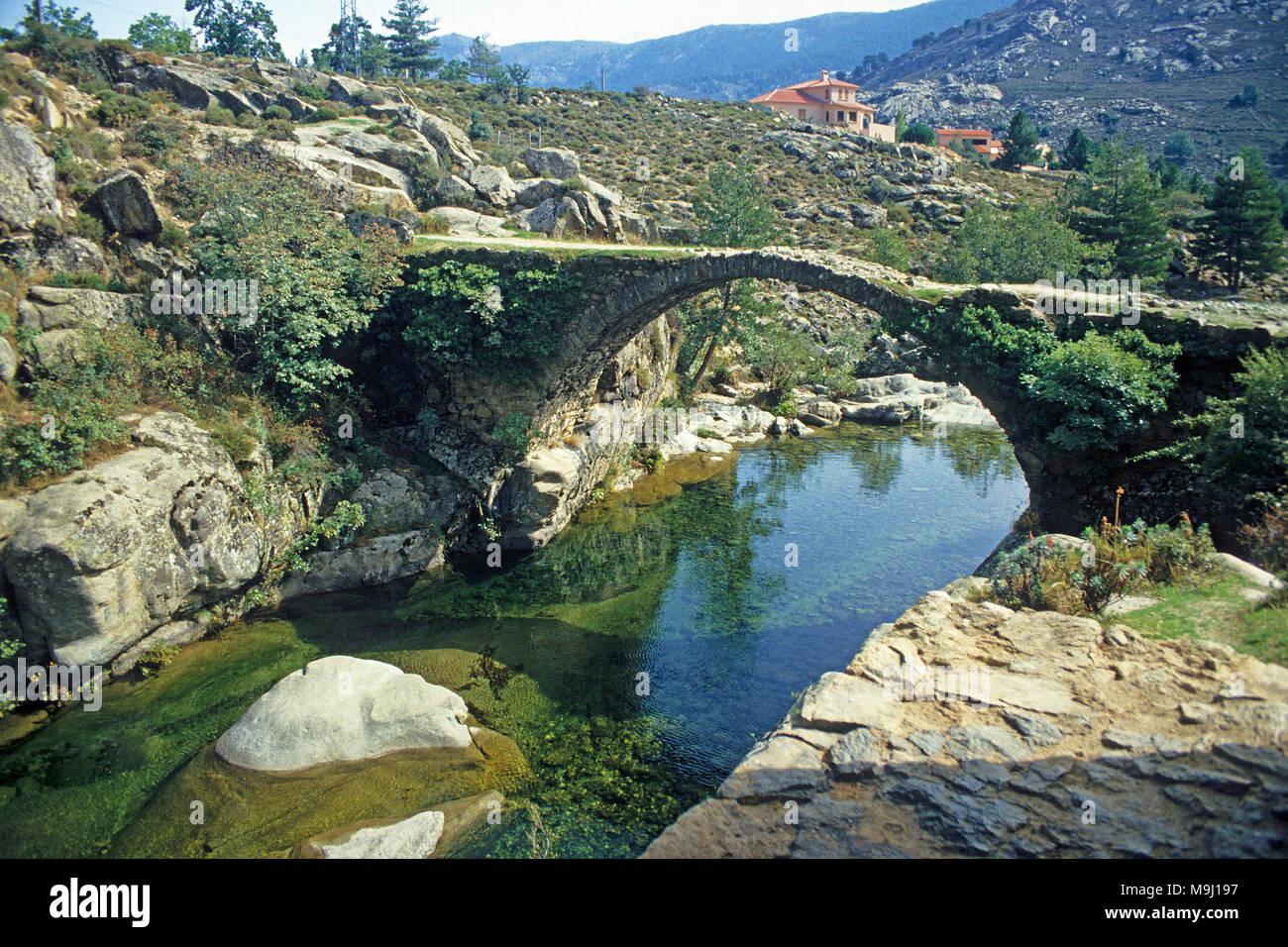 Alte Genueser Steinbrücke in Niolu Tal, Calacuccia, Korsika, Frankreich, Mittelmeer, Europa Stockbild
