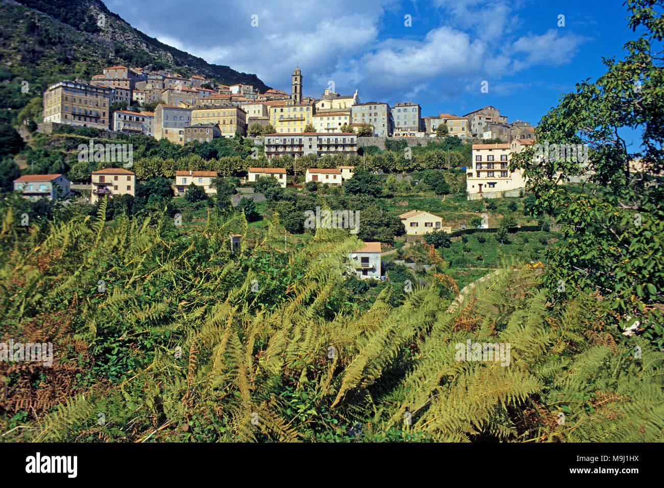 Das malerische Bergdorf Cervione, Korsika, Frankreich, Mittelmeer, Europa Stockbild