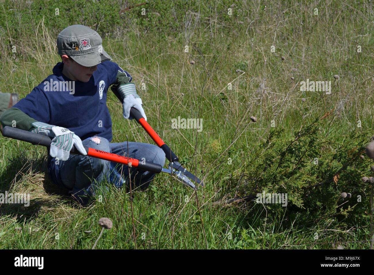 USFWS bei der Arbeit zum Schutz der Umwelt. Stockfoto