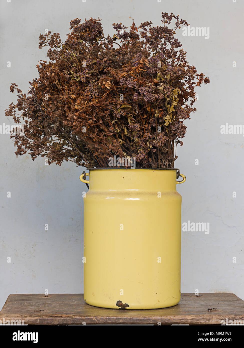 Haus Dekoration Konzept: Getrocknete Blumen In Einem Gelben Metall Topf Auf  Alten Hölzernen Schemel Mit Nägel Heraus