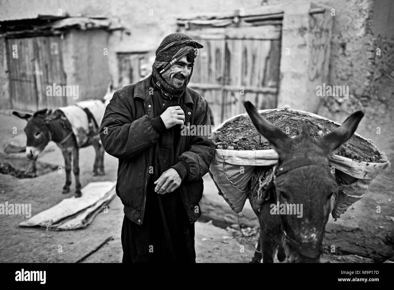 Eine afghanische Arbeiter eine Auszeit nimmt, während seine Esel in Kabul, Afghanistan, Freitag, 20. November 2009 Laden. Stockbild
