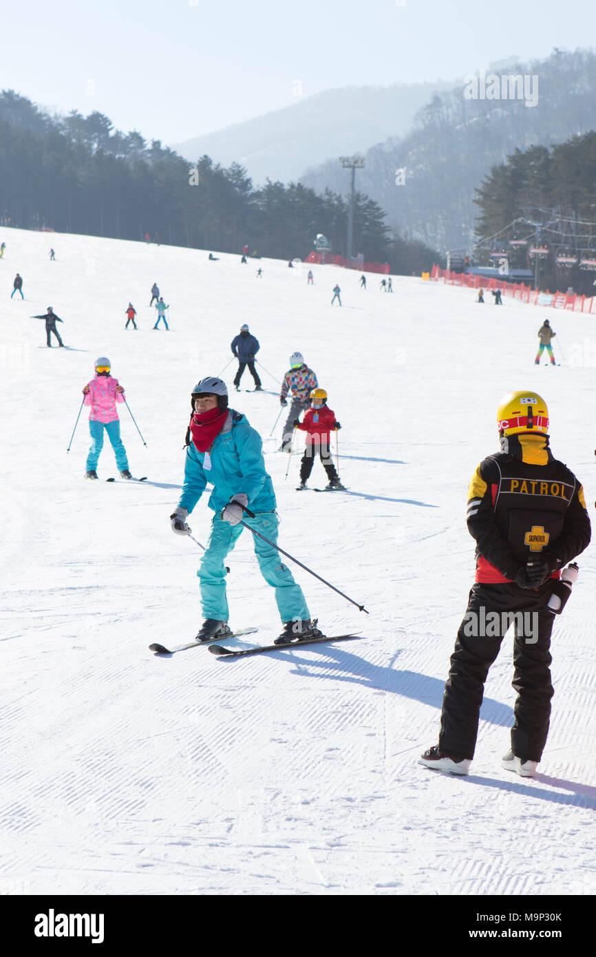 Ein Ski patroller beobachtet die bunny Neigung an Yongpyong, Verhütung von Unfällen. Das Yongpyong-resort (Dragon Valley) Ski Resort ist ein Skigebiet in Südkorea, in Daegwallyeong-myeon, Pyeongchang, Gangwon-do. Es ist die größte Ski- und Snowboard Resorts in Korea. Das Yongpyong-resort bewirten die technischen Ski alpin Veranstaltungen für die olympischen Winterspiele und Paralympics 2018 in Pyeongchang. Einige Szenen der 2002 Korean Broadcasting System drama Winter Sonata wurden im Resort gedreht. Stockbild