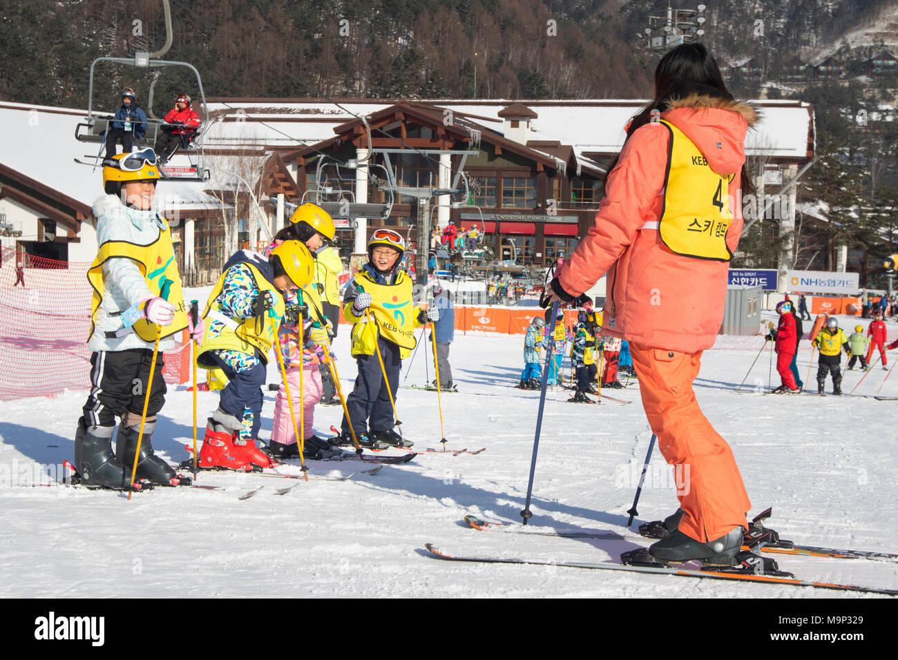 Ein Skilehrer und eine Gruppe von asiatischen Kindern an einem bunny Neigung von yongpyong. Das Yongpyong-resort (Dragon Valley) Ski Resort ist ein Skigebiet in Südkorea, in Daegwallyeong-myeon, Pyeongchang, Gangwon-do. Es ist die größte Ski- und Snowboard Resorts in Korea. Das Yongpyong-resort bewirten die technischen Ski alpin Veranstaltungen für die olympischen Winterspiele und Paralympics 2018 in Pyeongchang. Einige Szenen der 2002 Korean Broadcasting System drama Winter Sonata wurden im Resort gedreht. Stockbild