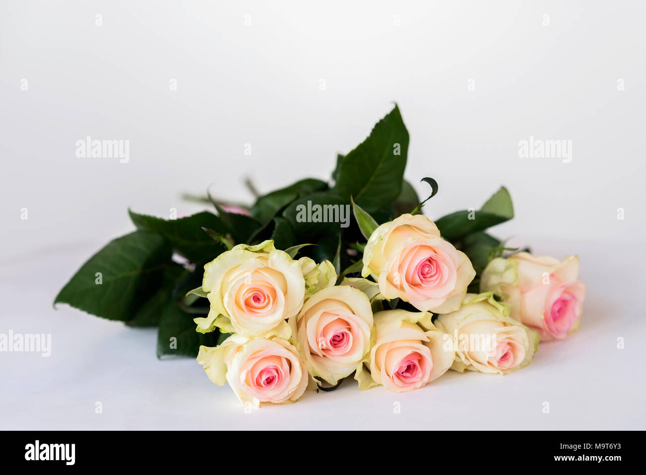 Romantische Bluhenden Zarten Cremefarbenen Rosen Blumenstrauss Fur