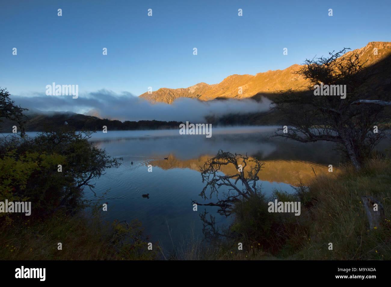 Morgennebel auf Moke Lake in der Nähe von Queenstown, Neuseeland Stockbild