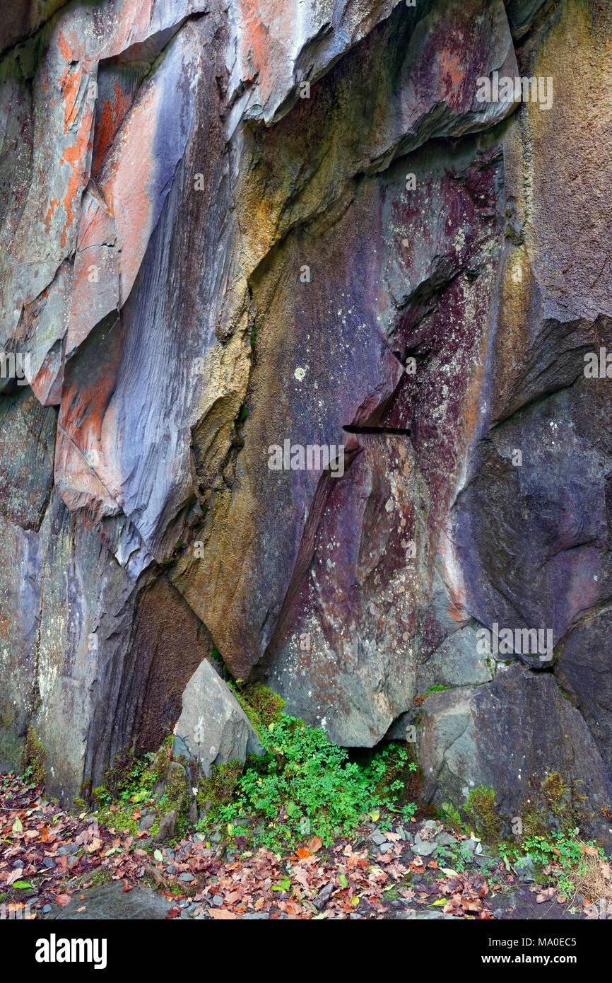 Eine Nahaufnahme semi Abstrakte Sicht eines schroffen Felswand im englischen Lake District. Stockbild