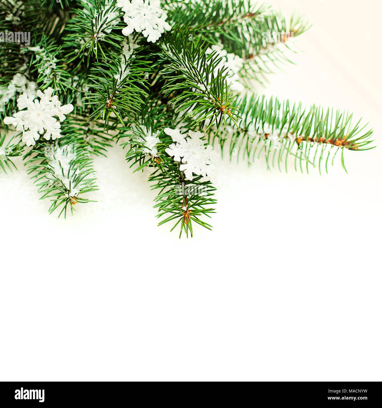 Weihnachten Grenze mit Schneeflocke und Green Xmas Tree Zweig ...