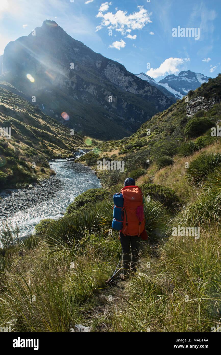 Trekking der Earnslaw brennen Track, Glenorchy, Neuseeland Stockbild