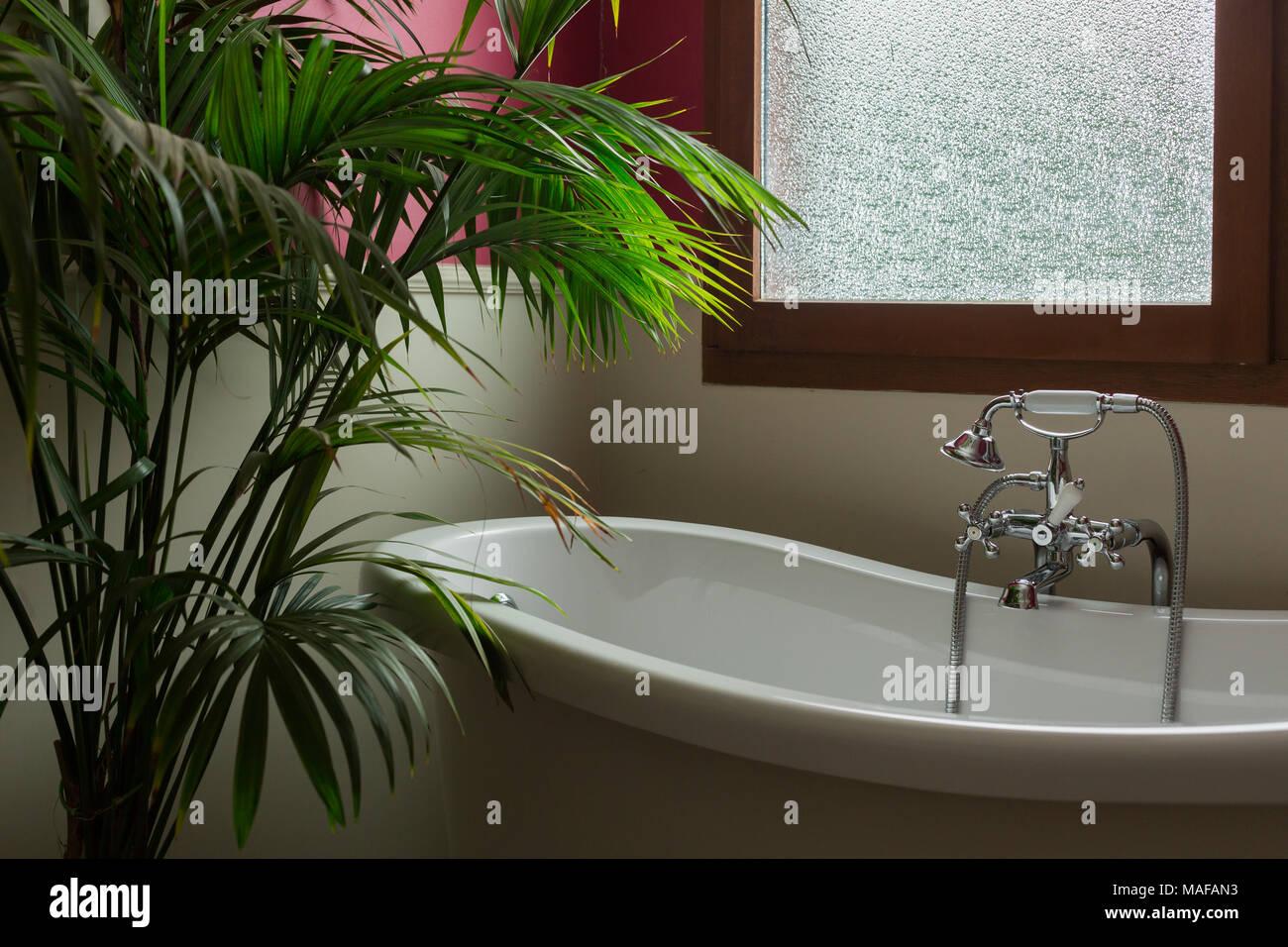 Ein vintage Badezimmer mit einer Weißen Wanne und eine grüne Pflanze ...