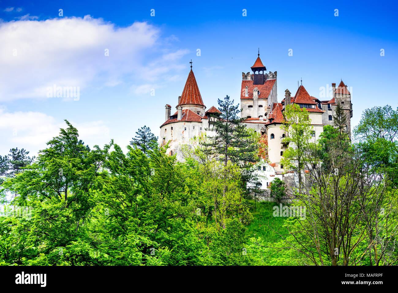 Schloss Bran, Rumänien. Atemberaubender Frühling Bild von Draculas Schloss in Kronstadt, Siebenbürgen, Osteuropa. Stockbild