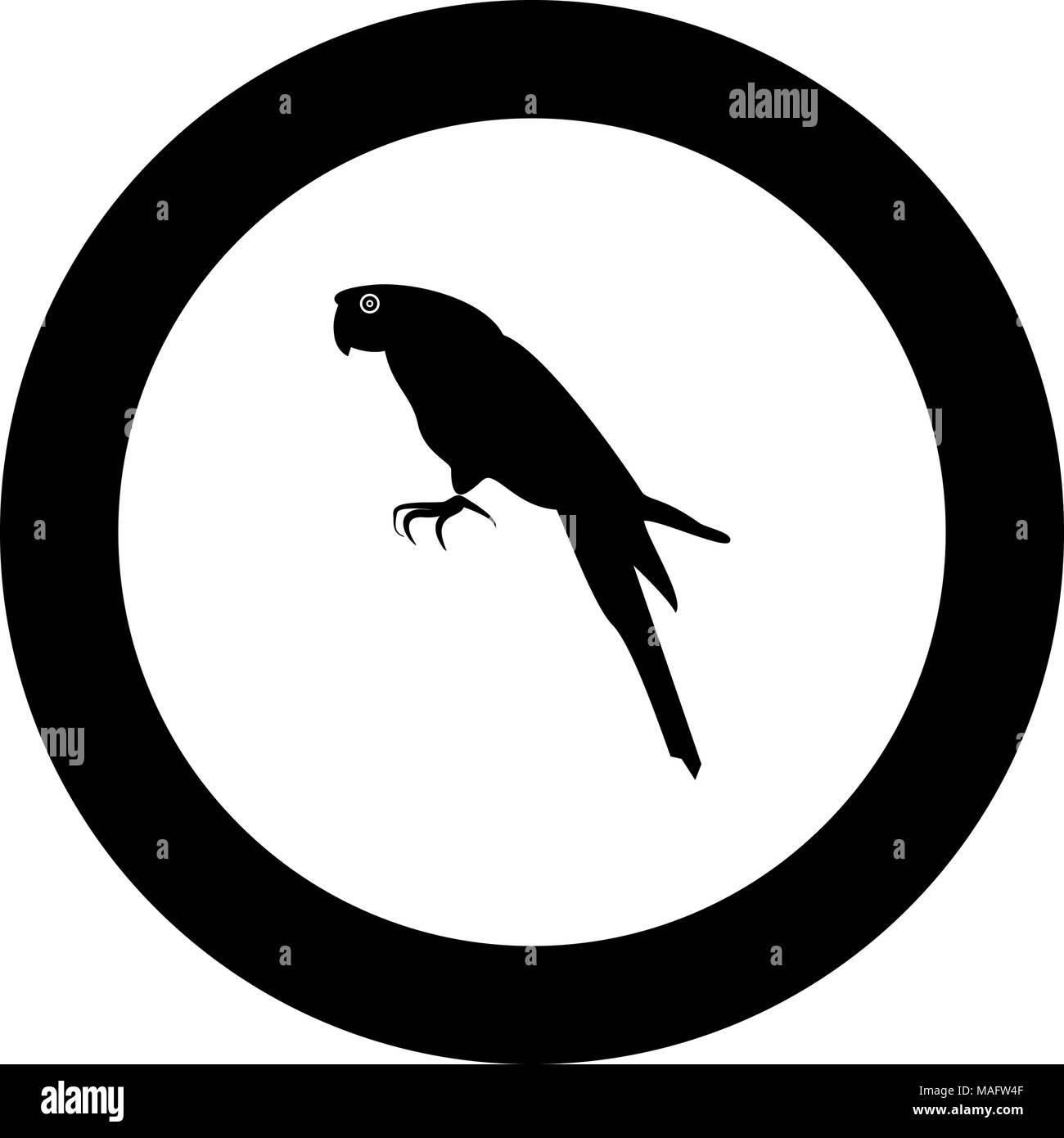 Macaw Cartoon Stockfotos & Macaw Cartoon Bilder - Seite 3 - Alamy