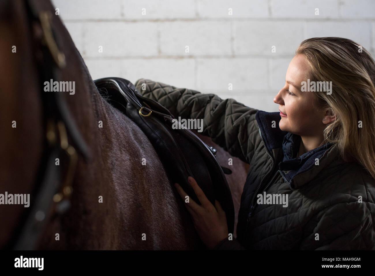 Weibliche Eigentümer einstellen Sattel Gurte in stabilen mit Pferd Stockfoto
