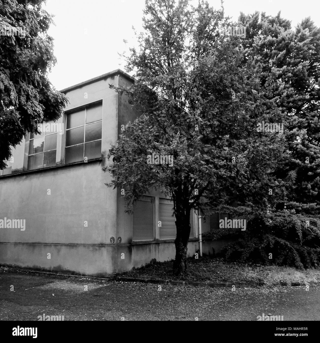 Herbst Morgen Spaziergang durch Vinatier psychiatrischen Krankenhaus Park, Bron, Frankreich Stockbild