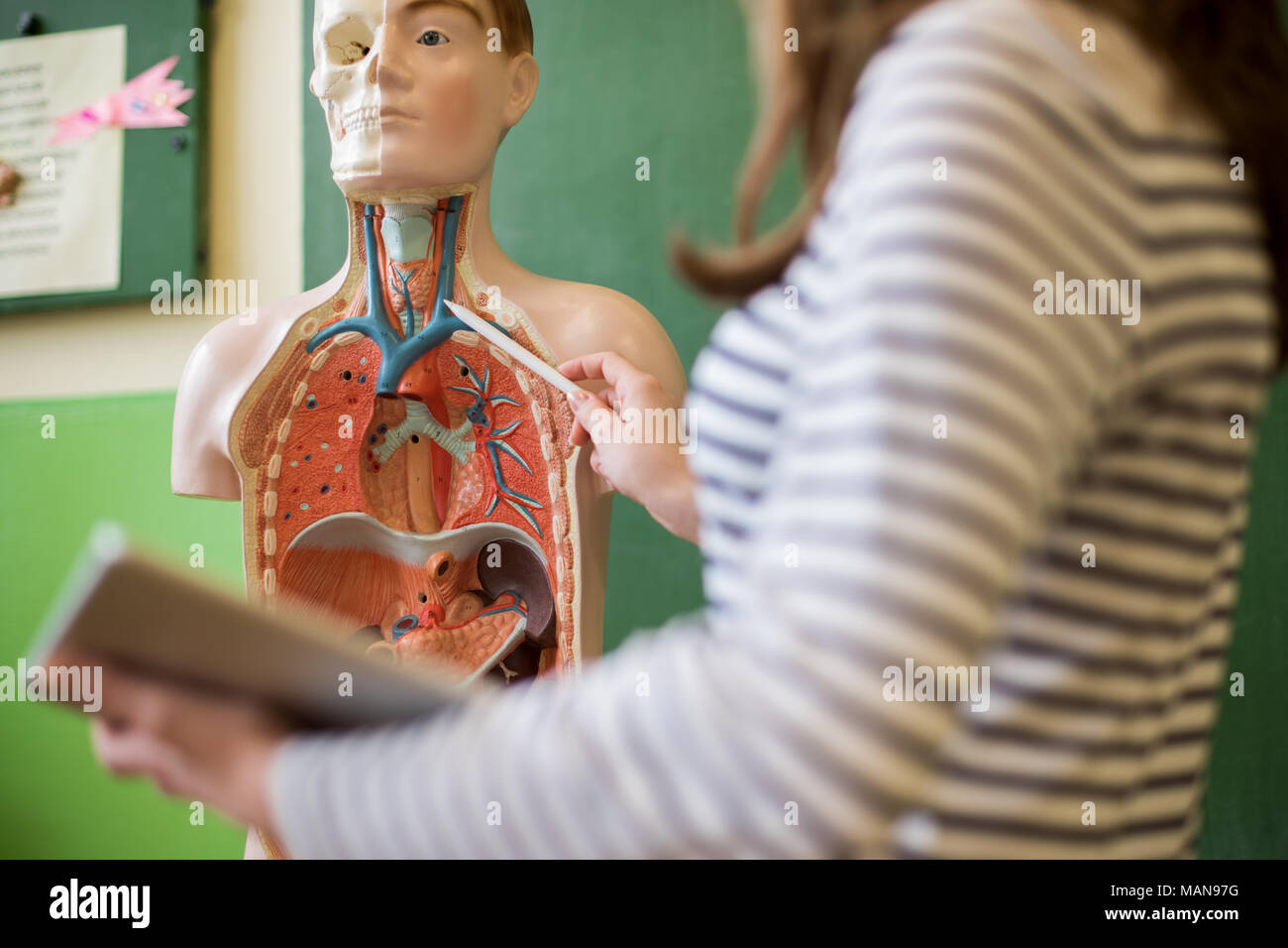 Junge Lehrerin im Biologieunterricht, digital Tablet und Lehre ...