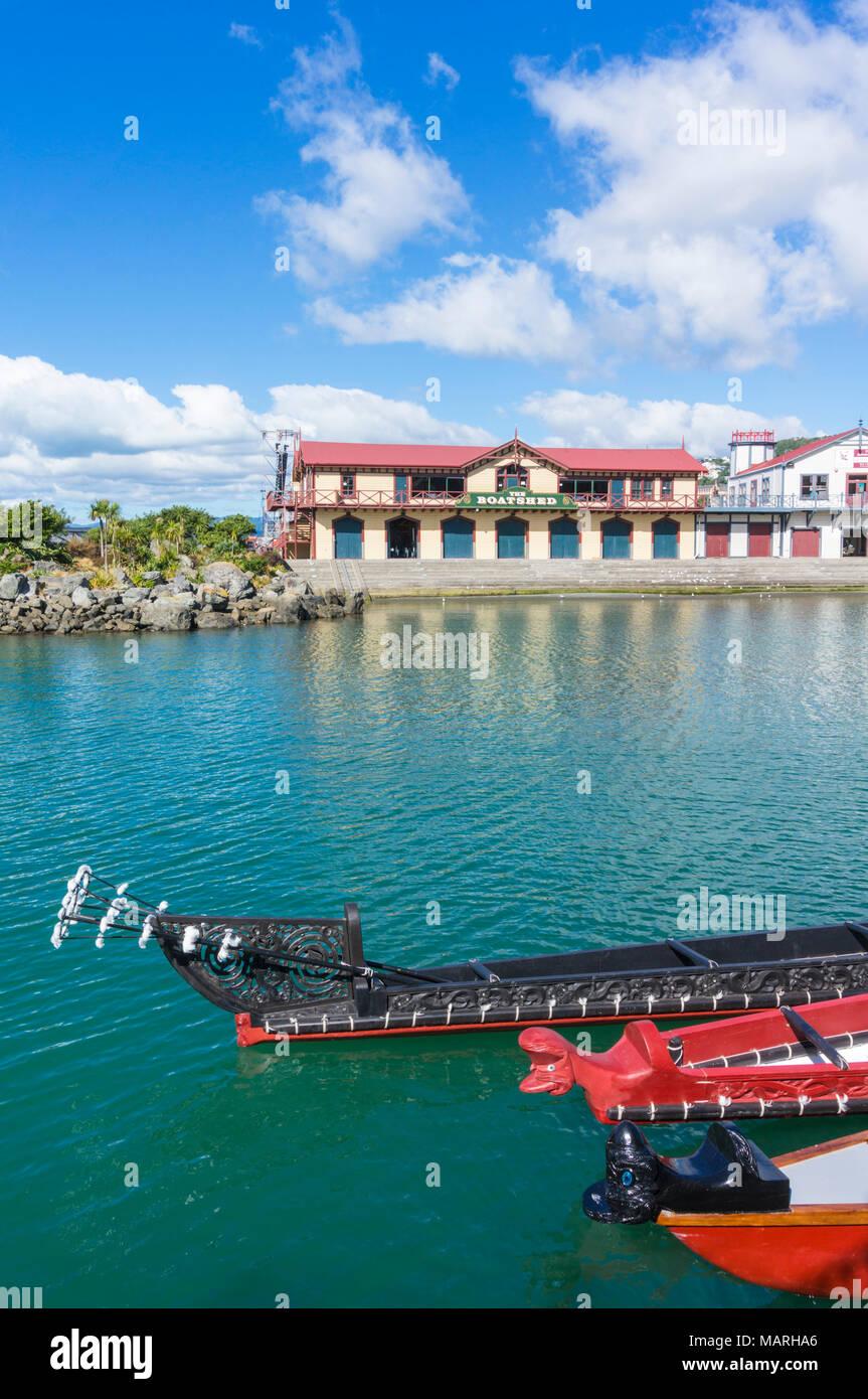 Neuseeland WELLINGTON NEUSEELAND Sie Prows der traditionellen Maori Kanus oder wakas durch den historischen Schauplatz die boatshed waterfront Wellington Neuseeland Stockbild