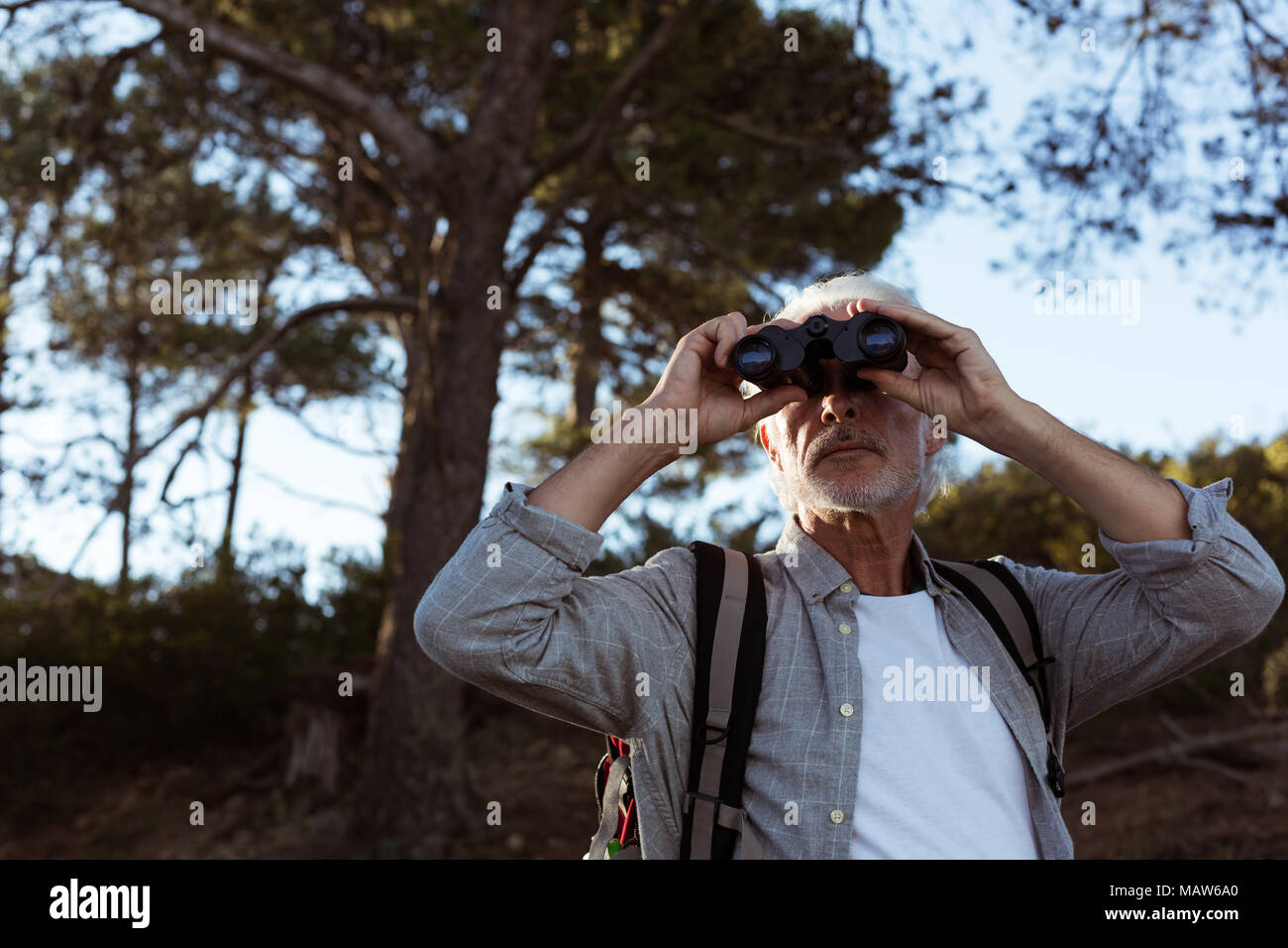 Ältere wanderer durch ein fernglas im wald suchen stockfoto bild