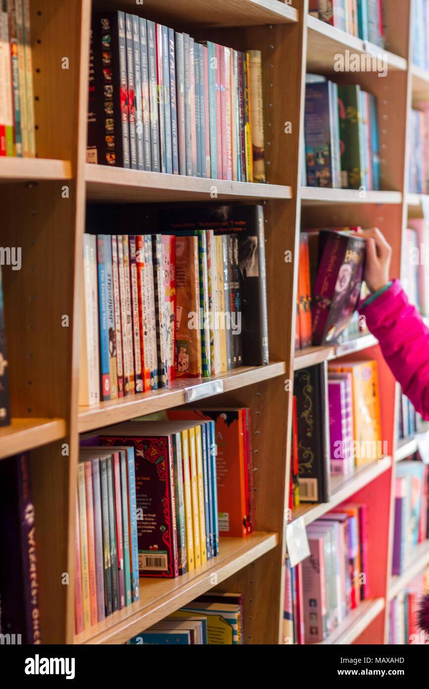 Bücherregal Bücher in einer Buchhandlung, Buchhandlung ...