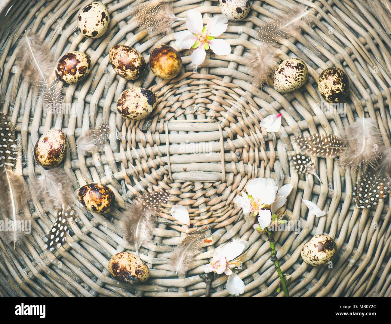 Naturfarbene Wachteleier für Ostern mit Blumen Stockbild