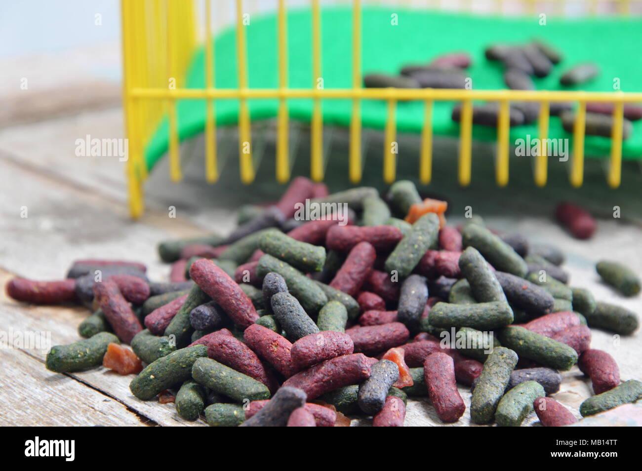 Kaninchen essen in gelb Käfig auf Holzbrett Stockfoto, Bild ...