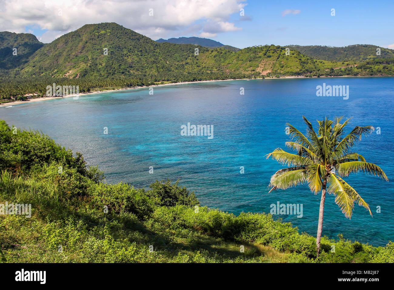 Wunderbare Aussicht in Lombok Strait, Indonesien mit einer isolierten Kokospalme Stockbild