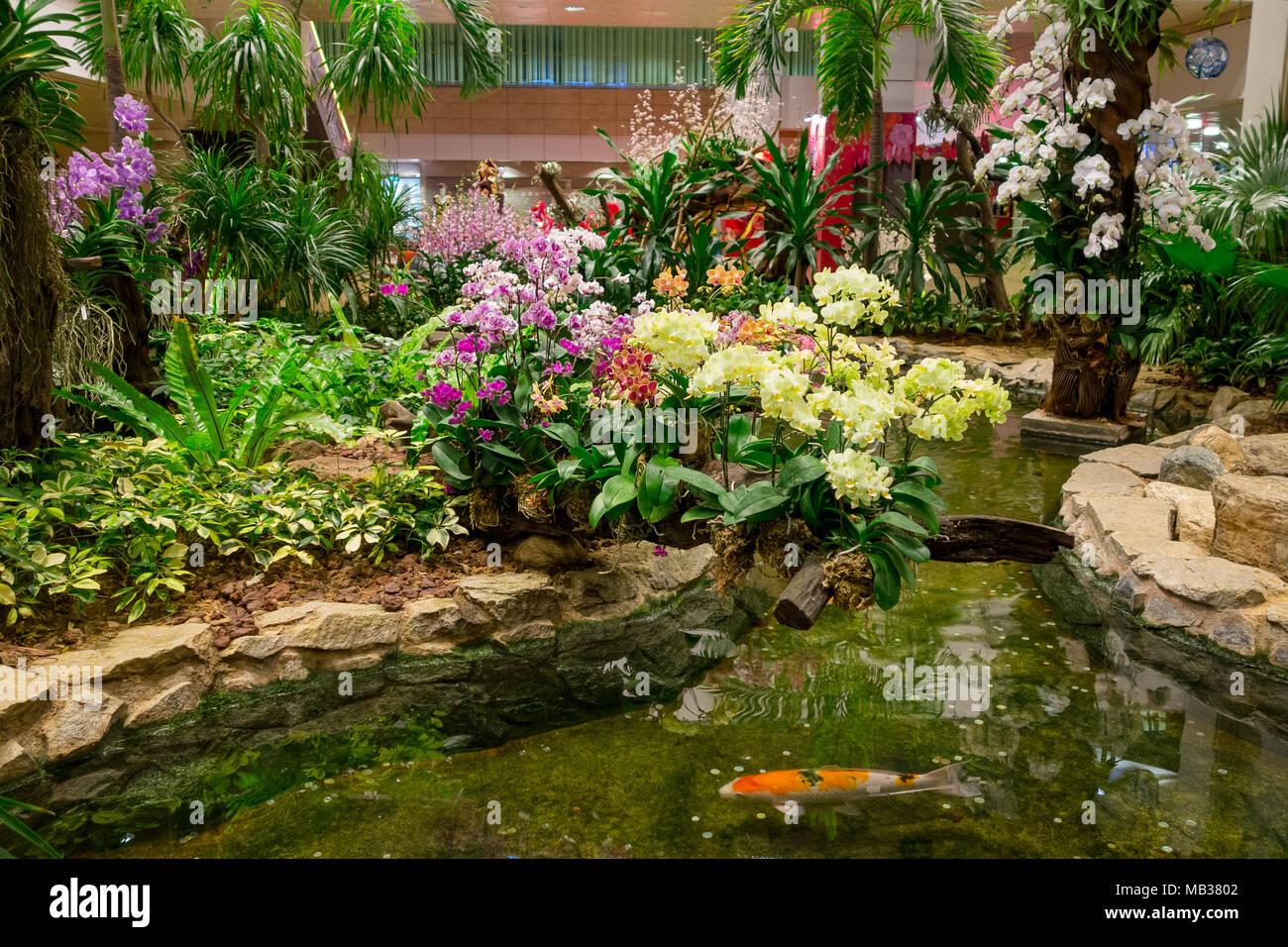 Best Indoor Garten In Singapur Contemporary - Amazing Home Ideas ...