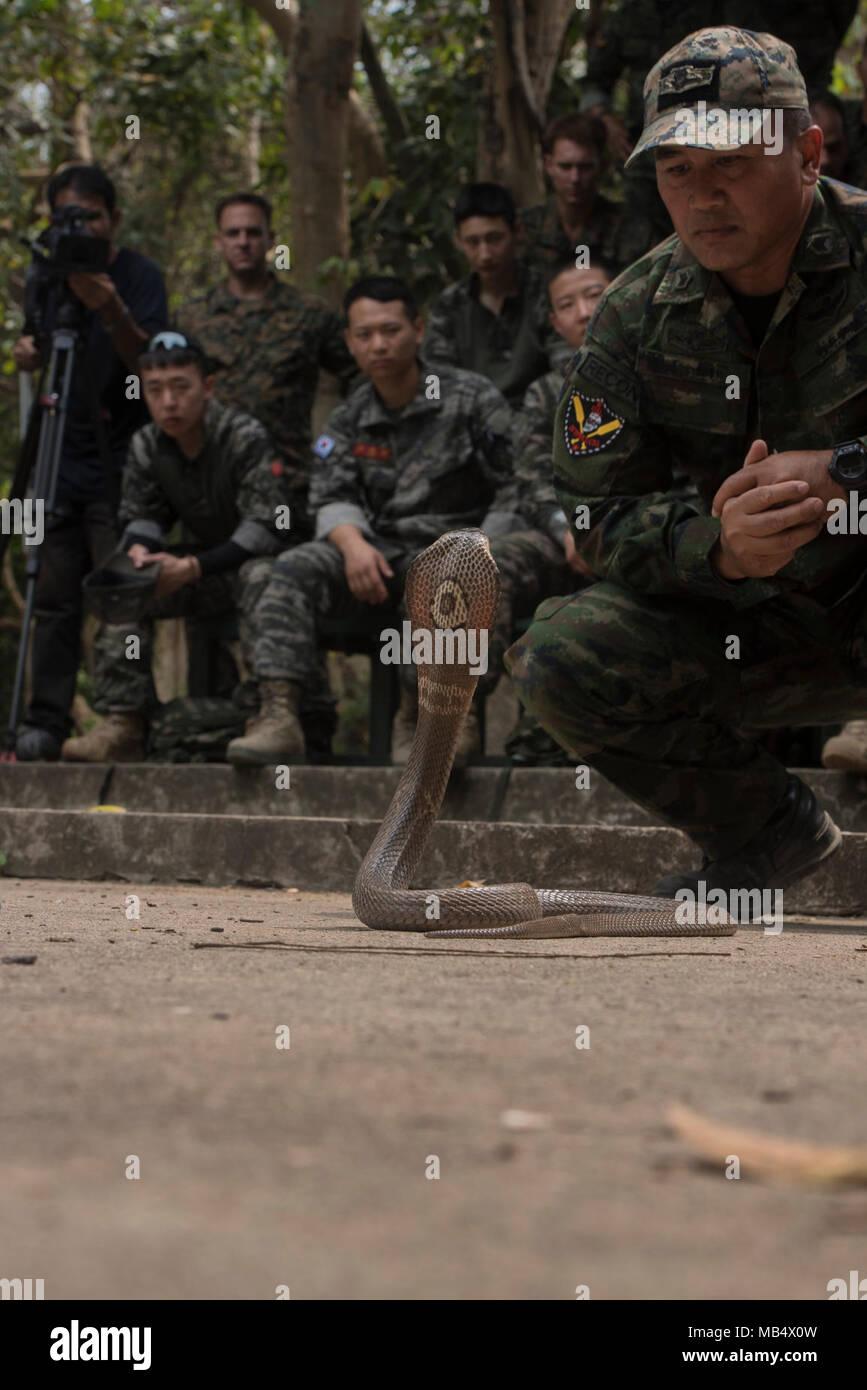 Großartig Uns Armee Infanterie Fortsetzen Beispiele Bilder ...
