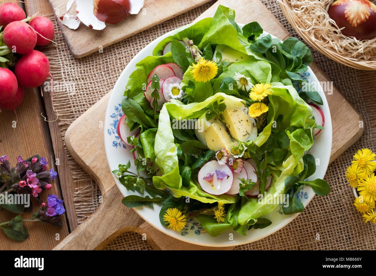 salat wigh eier salat radieschen und wilde essbare pflanzen huflattich g nsebl mchen. Black Bedroom Furniture Sets. Home Design Ideas