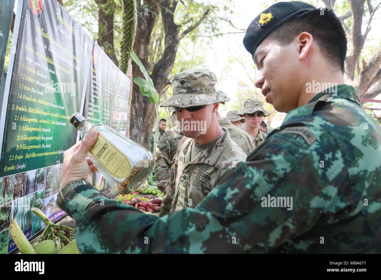 Ziemlich Armee Infanterie Lebenslauf Beispiel Fotos - Entry Level ...
