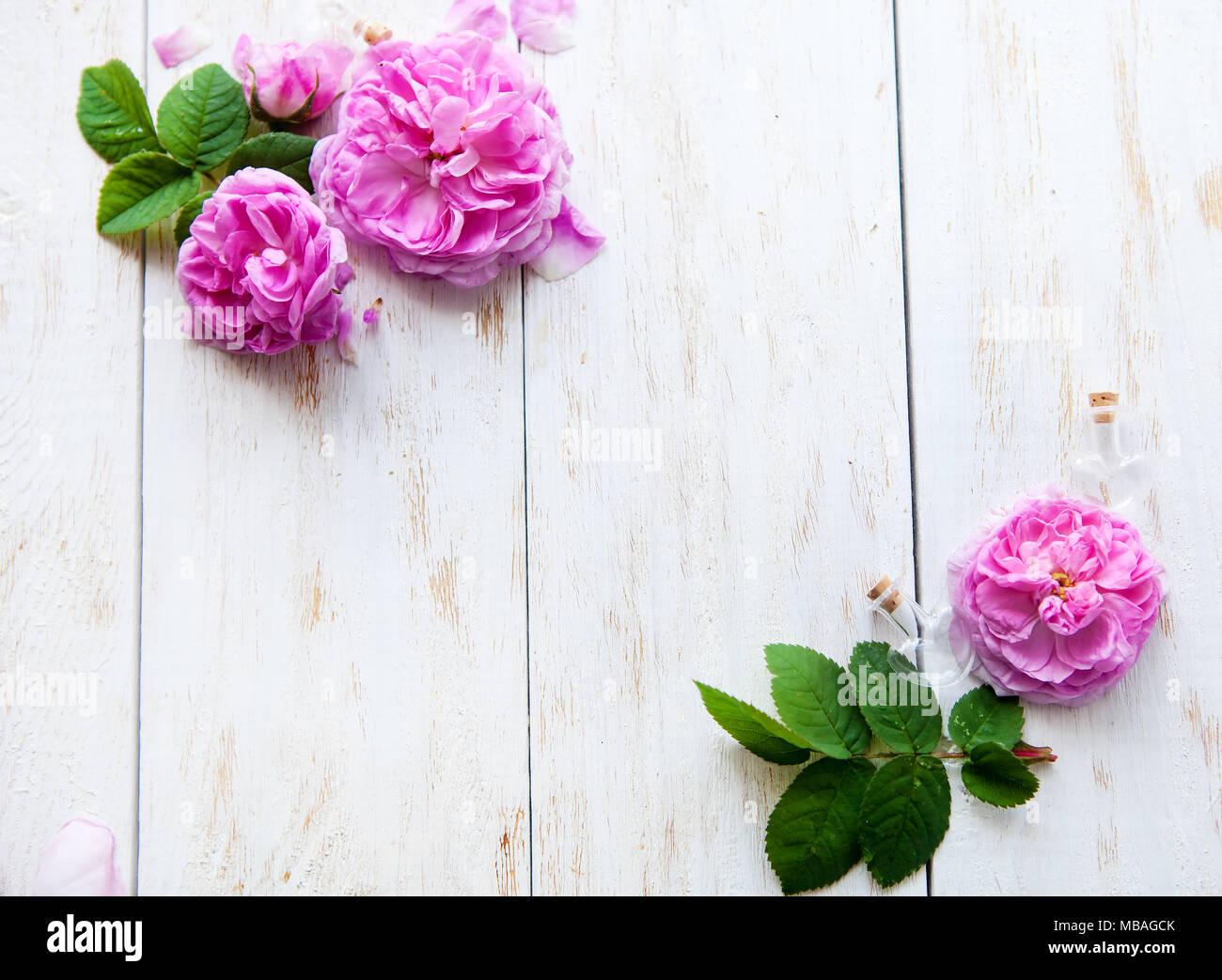Runde Rahmen aus Rosen, grüne Blätter, Zweige auf weißem Hintergrund ...