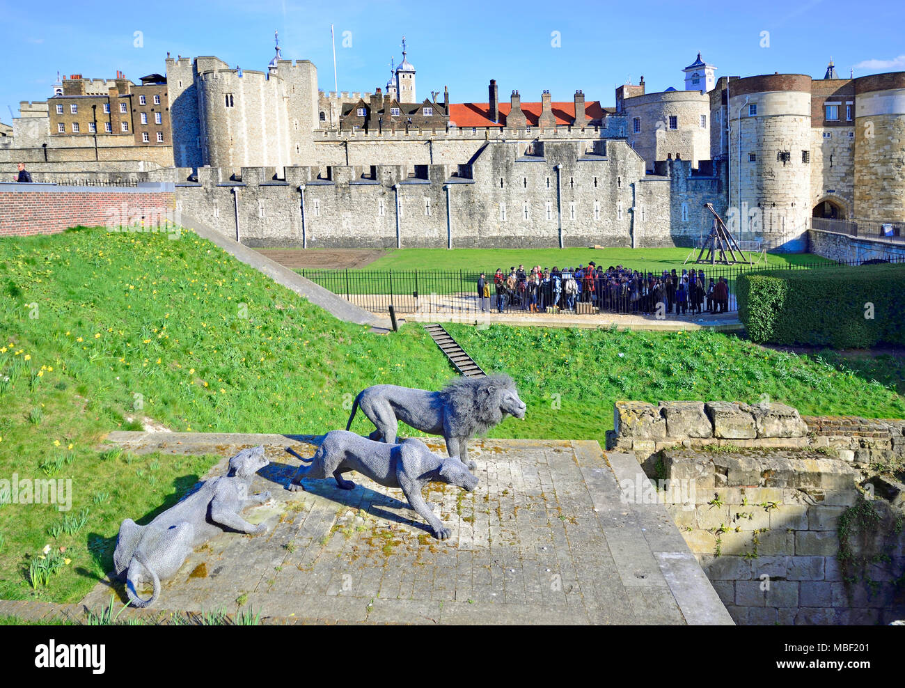 London, England, UK. Tower von London (11.-14 thC) 3 Lions ...