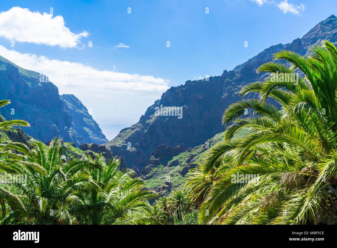Den Berg Macizo de Teno Gebirge in Teneriffa, Kanarische Inseln Stockbild