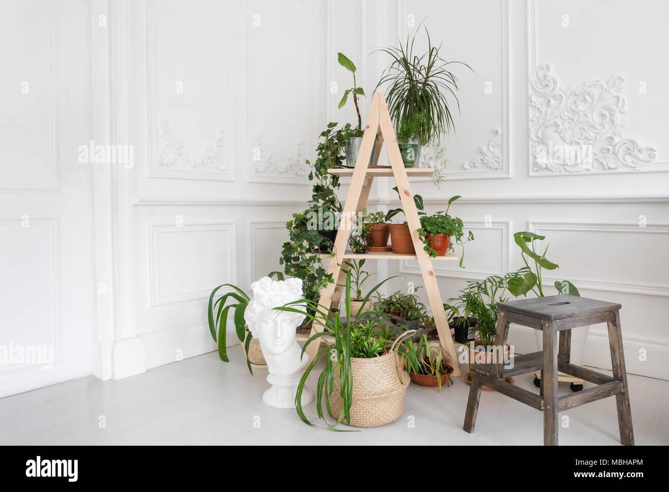 Luxuriöse Helle Einrichtung Im Barockstil Ein Geräumiges Zimmer Mit
